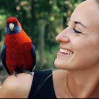Laura G - Profile for Pet Hosting in Australia