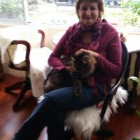 Luba  Z - Profile for Pet Hosting in Australia