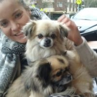 Renee B - Profile for Pet Hosting in Australia
