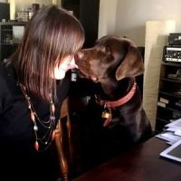 maarja k - Profile for Pet Hosting in Australia