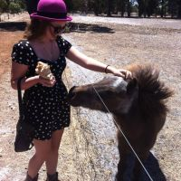 bonny a - Profile for Pet Hosting in Australia