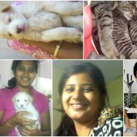 sukeerthy s - Profile for Pet Hosting in Australia