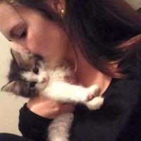 Sian L - Profile for Pet Hosting in Australia
