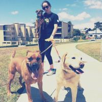 Julie L - Profile for Pet Hosting in Australia