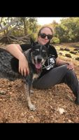 Emma P - Profile for Pet Hosting in Australia