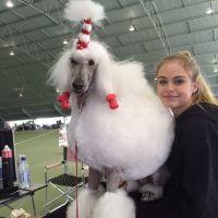 Chelsea L - Profile for Pet Hosting in Australia