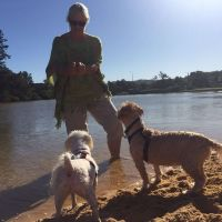 Dion H - Profile for Pet Hosting in Australia