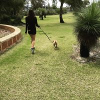Jemma M - Profile for Pet Hosting in Australia