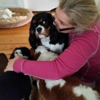 Angie P - Profile for Pet Hosting in Australia