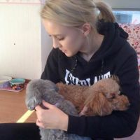 Kate R - Profile for Pet Hosting in Australia