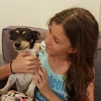 Aylie P - Profile for Pet Hosting in Australia