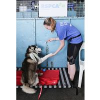 Emma M - Profile for Pet Hosting in Australia