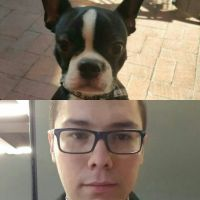 Andres David B - Profile for Pet Hosting in Australia
