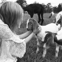 Marc Desveaux & - Profile for Pet Hosting in Australia