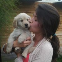 Alejandra H - Profile for Pet Hosting in Australia