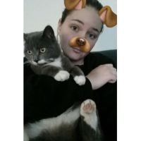 Taylor J - Profile for Pet Hosting in Australia