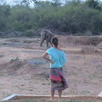 Cass L - Profile for Pet Hosting in Australia