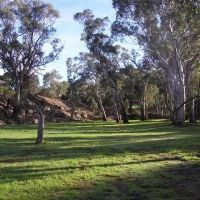 Marta C - Profile for Pet Hosting in Australia
