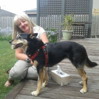 Susan C - Profile for Pet Hosting in Australia