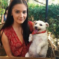 Jorden T - Profile for Pet Hosting in Australia