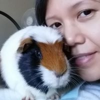 Sara P - Profile for Pet Hosting in Australia