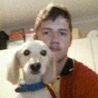 Lachlan T - Profile for Pet Hosting in Australia