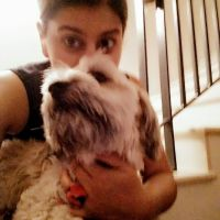 Jasmine C - Profile for Pet Hosting in Australia