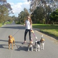 Katie B - Profile for Pet Hosting in Australia