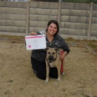Tatiana L - Profile for Pet Hosting in Australia
