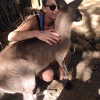 Jeanne P - Profile for Pet Hosting in Australia