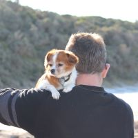 Jessica M - Profile for Pet Hosting in Australia