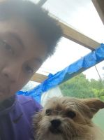 Chuan Meh Y - Profile for Pet Hosting in Australia