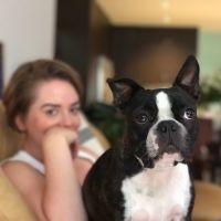 Ashleigh G - Profile for Pet Hosting in Australia