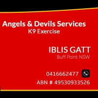 Iblis G - Profile for Pet Hosting in Australia