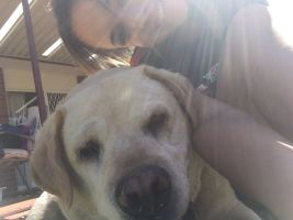 Maddy G - Profile for Pet Hosting in Australia