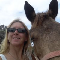 Carol  O - Profile for Pet Hosting in Australia