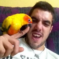 Darko M - Profile for Pet Hosting in Australia