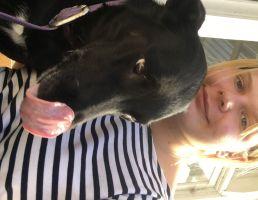 Stella M - Profile for Pet Hosting in Australia