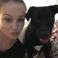 Amy p - Profile for Pet Hosting in Australia