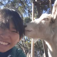 Janessa L - Profile for Pet Hosting in Australia
