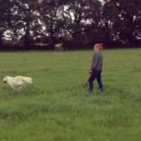 Jodie D - Profile for Pet Hosting in Australia