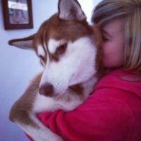 Madeline  C - Profile for Pet Hosting in Australia