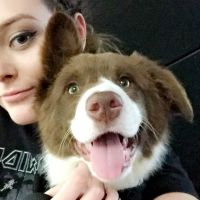 Madi S - Profile for Pet Hosting in Australia