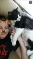 Madison S - Profile for Pet Hosting in Australia