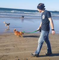Dominic S - Profile for Pet Hosting in Australia