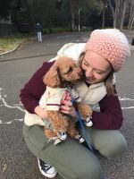 Olivia T - Profile for Pet Hosting in Australia