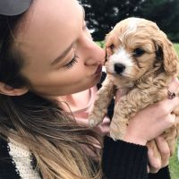 Laura M - Profile for Pet Hosting in Australia