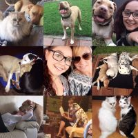 LM P - Profile for Pet Hosting in Australia