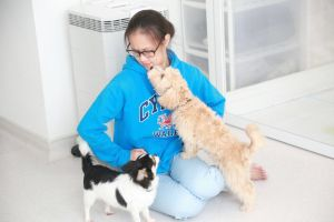 Ashley C - Profile for Pet Hosting in Australia