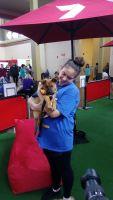 Kristina R - Profile for Pet Hosting in Australia